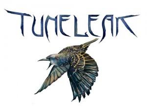 tuneleak2